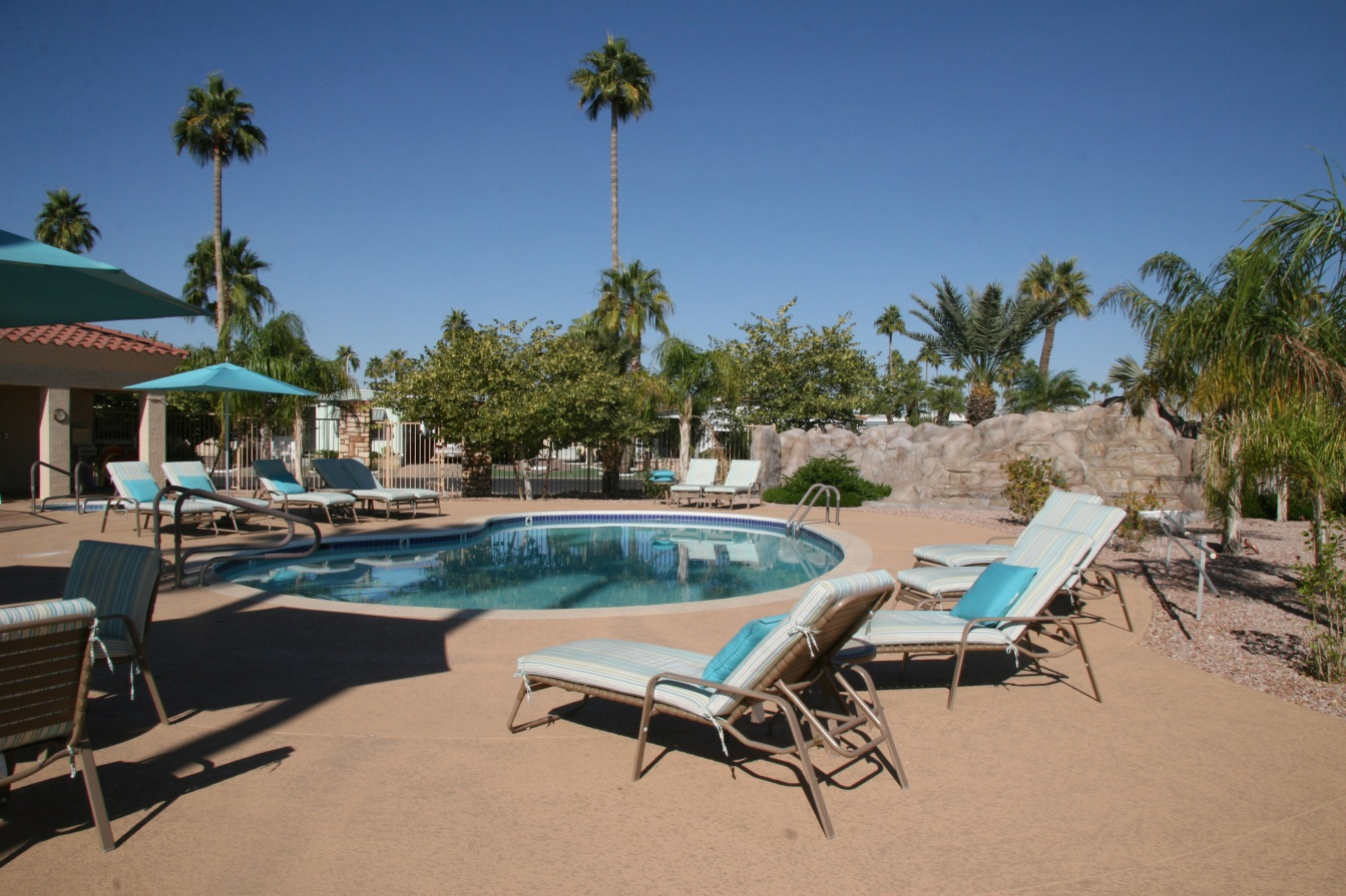 palm gardens rv resort find campgrounds near mesa arizona mobilerving