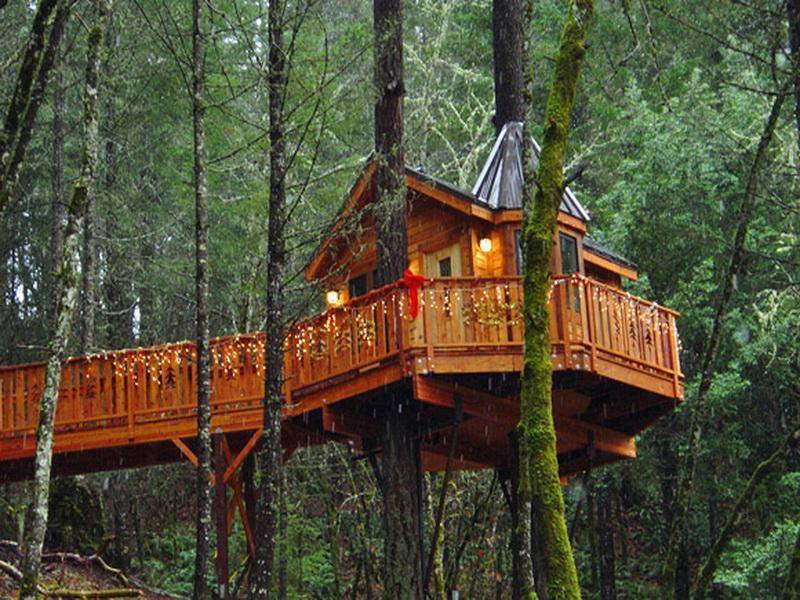 Branson Treehouse Adventures Find Campgrounds Near