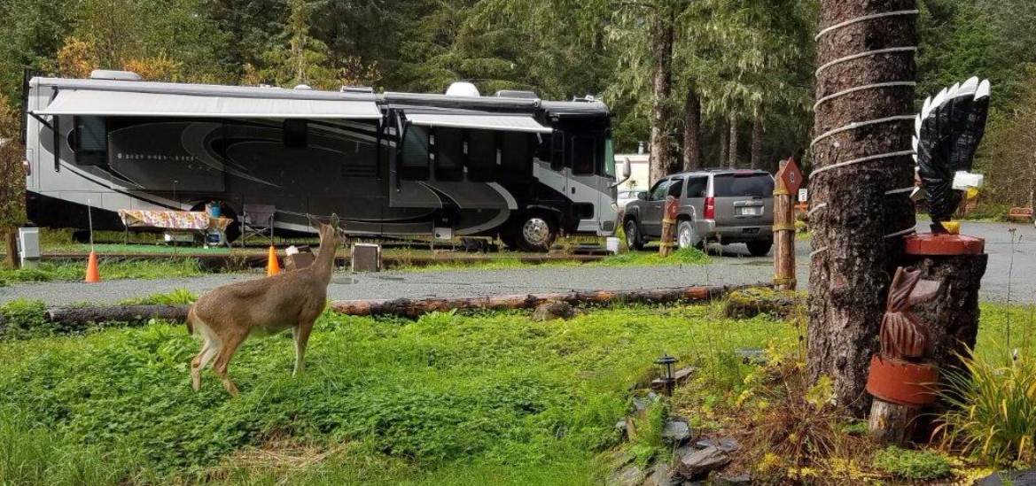 RV Park Brings Guests From All Over The World [Alaska]